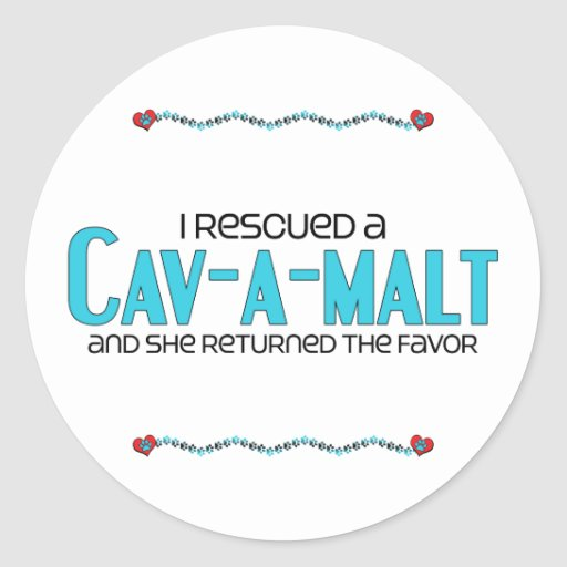 I Rescued a Cav-A-Malt (Female) Dog Adoption Round Stickers