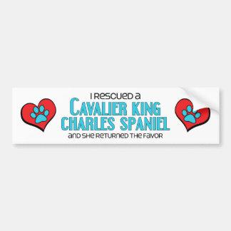 I Rescued a Cavalier King Charles Spaniel (Female) Car Bumper Sticker
