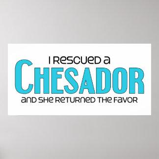 I Rescued a Chesador (Female) Dog Adoption Design Poster