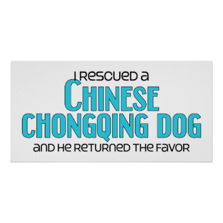 I Rescued a Chinese Chongqing Dog (Male Dog) Poster