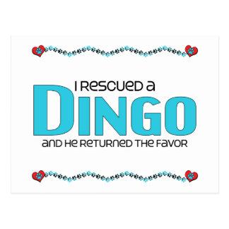 I Rescued a Dingo (Male Dog) Postcard