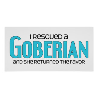 I Rescued a Goberian (Female) Dog Adoption Design Poster