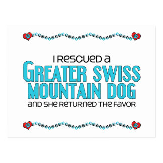 I Rescued a Greater Swiss Mountain Dog (Female) Postcard