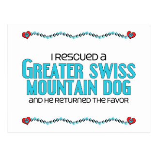 I Rescued a Greater Swiss Mountain Dog (Male Dog) Postcard