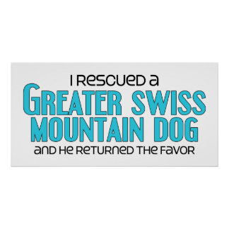 I Rescued a Greater Swiss Mountain Dog (Male Dog) Poster