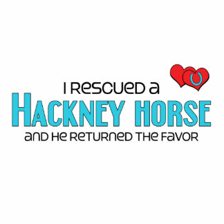 I Rescued a Hackney Horse (Male Horse) Cut Out