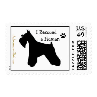 I Rescued a Human Postage Stamp