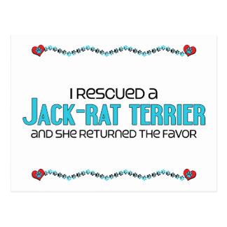 I Rescued a Jack-Rat Terrier (Female) Dog Adoption Postcard
