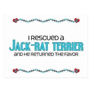 I Rescued a Jack-Rat Terrier (Male) Dog Adoption Postcard