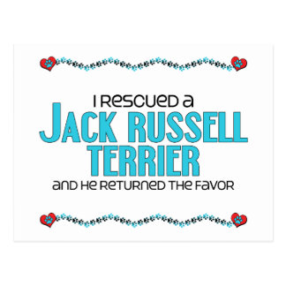 I Rescued a Jack Russell Terrier (Male Dog) Postcard