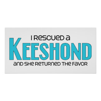 I Rescued a Keeshond (Female Dog) Poster