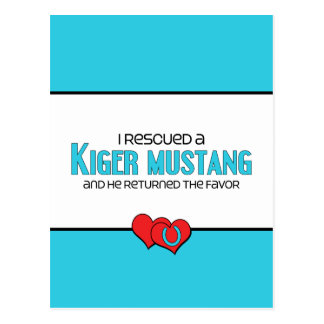 I Rescued a Kiger Mustang (Male Horse) Postcard