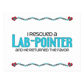 I Rescued a Lab-Pointer (Male) Dog Adoption Design Postcard