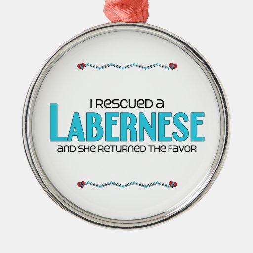 I Rescued a Labernese (Female) Dog Adoption Design Ornaments