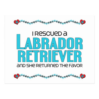 I Rescued a Labrador Retriever (Female Dog) Postcard