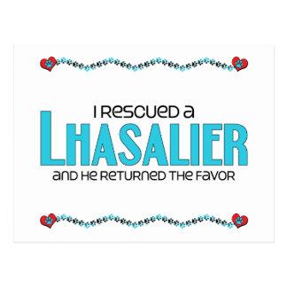 I Rescued a Lhasalier (Male) Dog Adoption Design Postcard