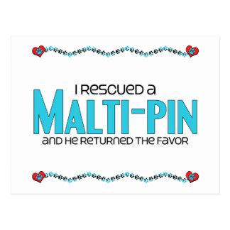 I Rescued a Malti-Pin (Male) Dog Adoption Design Postcard