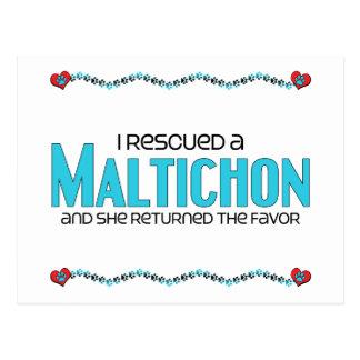 I Rescued a Maltichon (Female) Dog Adoption Design Postcard