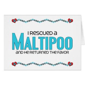 I Rescued a Maltipoo (Male) Dog Adoption Design Card