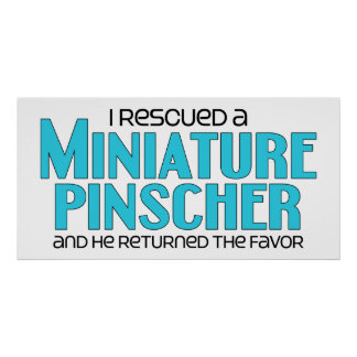 I Rescued a Miniature Pinscher (Male Dog) Posters