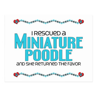 I Rescued a Miniature Poodle (Female Dog) Postcard