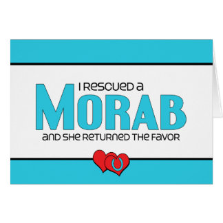 I Rescued a Morab (Female Horse) Stationery Note Card