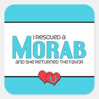 I Rescued a Morab (Female Horse) Square Sticker