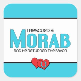 I Rescued a Morab (Male Horse) Square Sticker