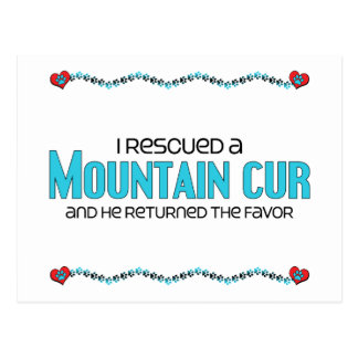 I Rescued a Mountain Cur (Male Dog) Postcard