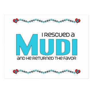 I Rescued a Mudi (Male Dog) Postcard