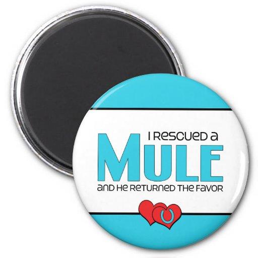 I Rescued a Mule (Male Mule) Refrigerator Magnet