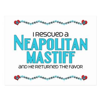 I Rescued a Neapolitan Mastiff (Male Dog) Postcard