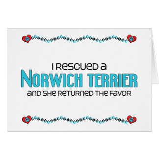 I Rescued a Norwich Terrier (Female Dog) Greeting Cards