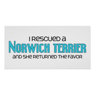 I Rescued a Norwich Terrier (Female Dog) Posters