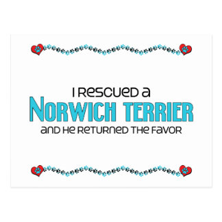 I Rescued a Norwich Terrier (Male Dog) Postcards