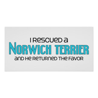 I Rescued a Norwich Terrier (Male Dog) Poster