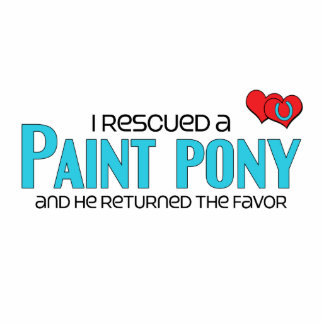 I Rescued a Paint Pony (Male Pony) Statuette