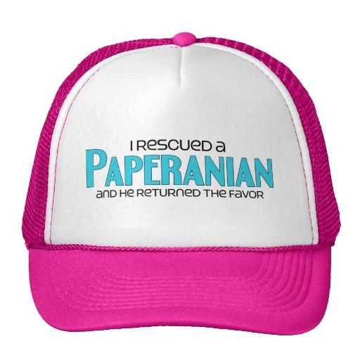 I Rescued a Paperanian (Male) Dog Adoption Design Mesh Hat