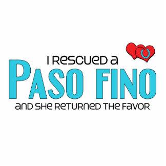 I Rescued a Paso Fino (Female Horse) Cut Out