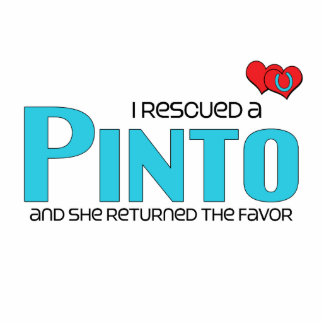 I Rescued a Pinto (Female Horse) Acrylic Cut Outs