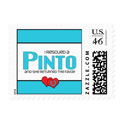 I Rescued a Pinto (Female Horse) Postage Stamps