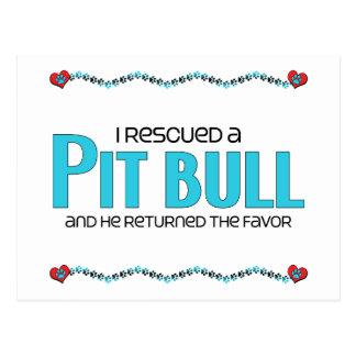 I Rescued a Pit Bull (Male Dog) Postcard