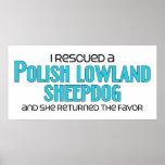 I Rescued a Polish Lowland Sheepdog (Female Dog) Posters