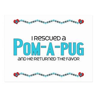I Rescued a Pom-A-Pug (Male) Dog Adoption Design Postcard
