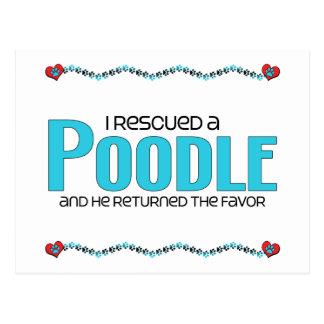 I Rescued a Poodle (Male Dog) Postcard