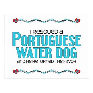 I Rescued a Portuguese Water Dog (Male Dog) Postcard