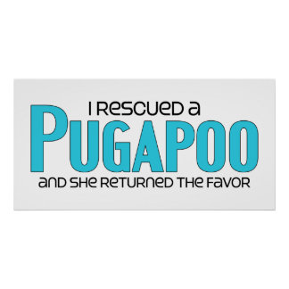 I Rescued a Pugapoo (Female) Dog Adoption Design Poster