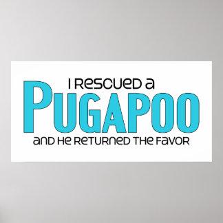 I Rescued a Pugapoo (Male) Dog Adoption Design Poster