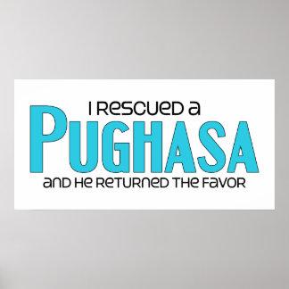 I Rescued a Pughasa (Male) Dog Adoption Design Poster