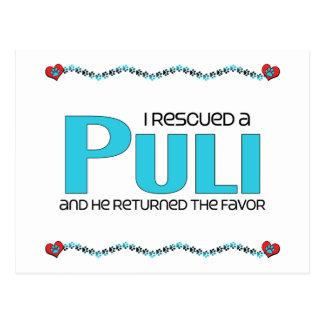 I Rescued a Puli (Male Dog) Postcard